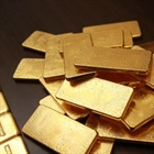Man loses suit against kids over return of 122 gold bars